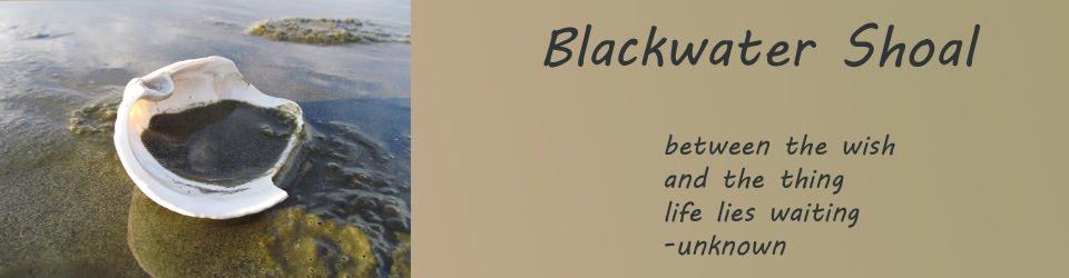 Blackwater Shoal