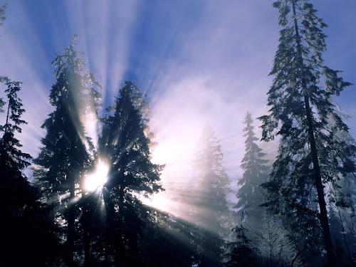 Gambar Salju indah