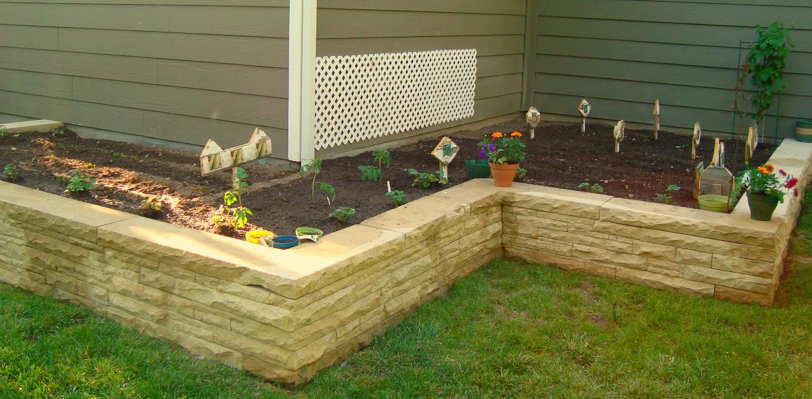 Crafty Savvy My garden