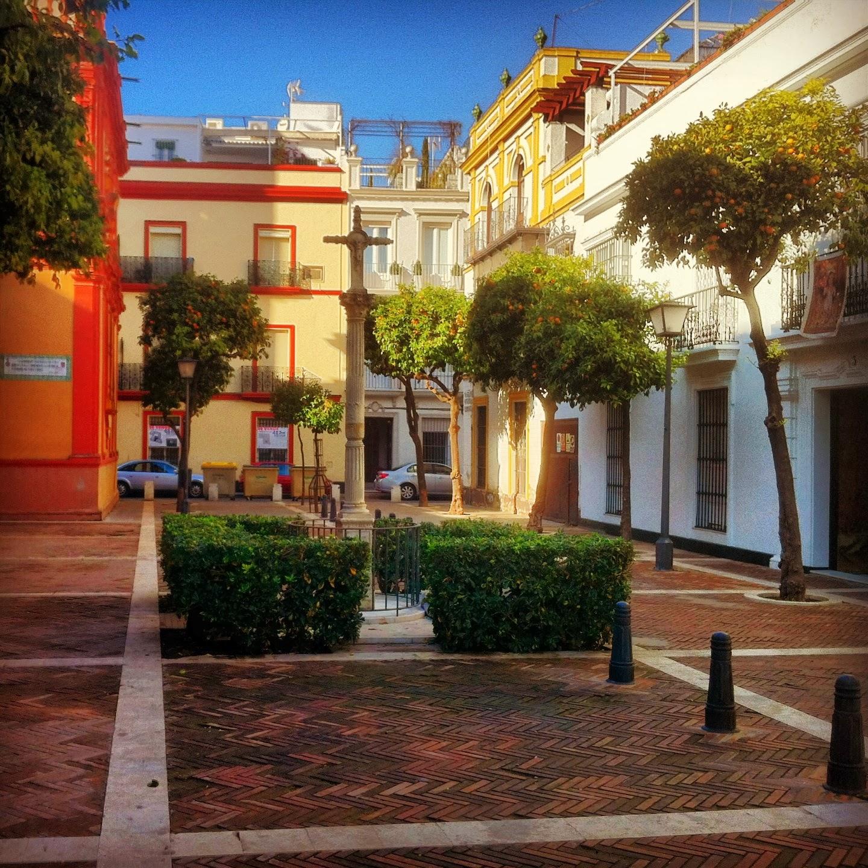 Gran Catarro en Sevilla