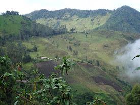 No a la mina 'La Colosa' (Colombia)