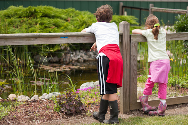 two kids looking at a koi pond