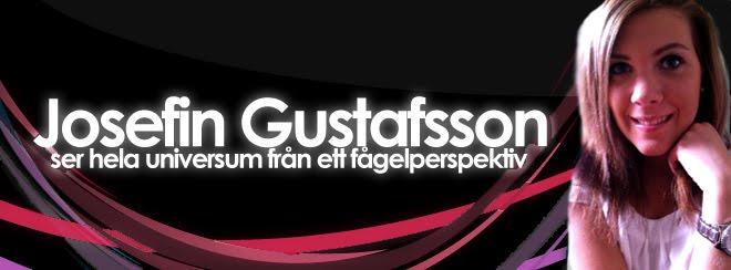 JosefinGustafsson - Jag ser hela universum från ett fågelperspektiv