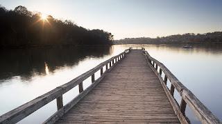 Puente de madera tres