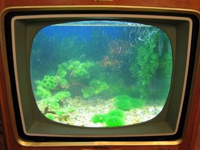 fish tank made out of old tv
