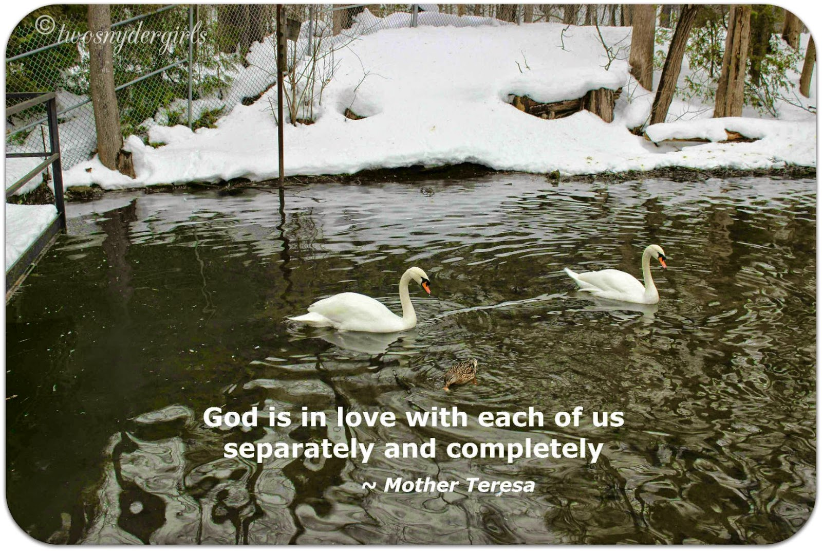 Mother Teresa quote God is in love with each of us