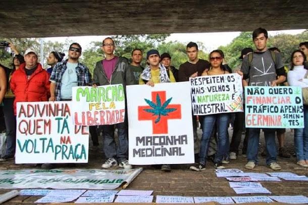 maconha medicinal