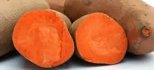 manfaat ubi jalar untuk diet