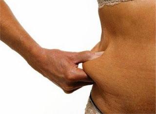 bloqueadores de gordura