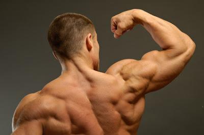 تمارين عضلات الاكتاف
