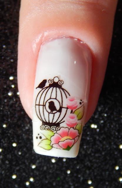 nail art passaro