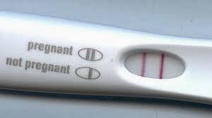 Marhalah kehamilan saya set Eu Four Pack Plus Shaklee
