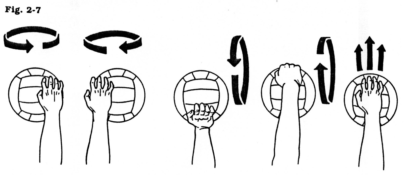 biomechanics in pe vollleyball My first vodcast for yr13 ncea physical education the first in a three part series helping students to revise the main biomechanical principles relating to .