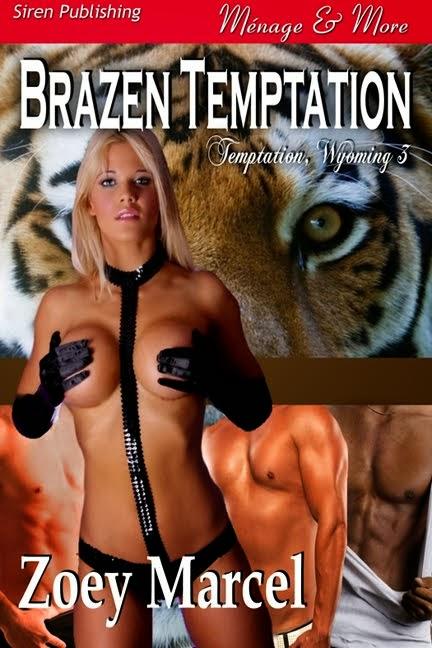 Brazen Temptation (Temptation, Wyoming 3)