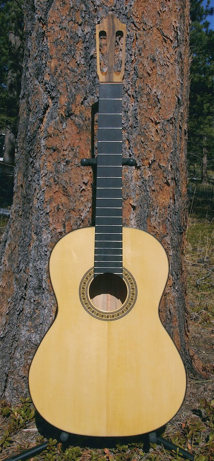 For Sale: Antonio Torres Fe 19 Model, Engelmann Spruce/California Laurel