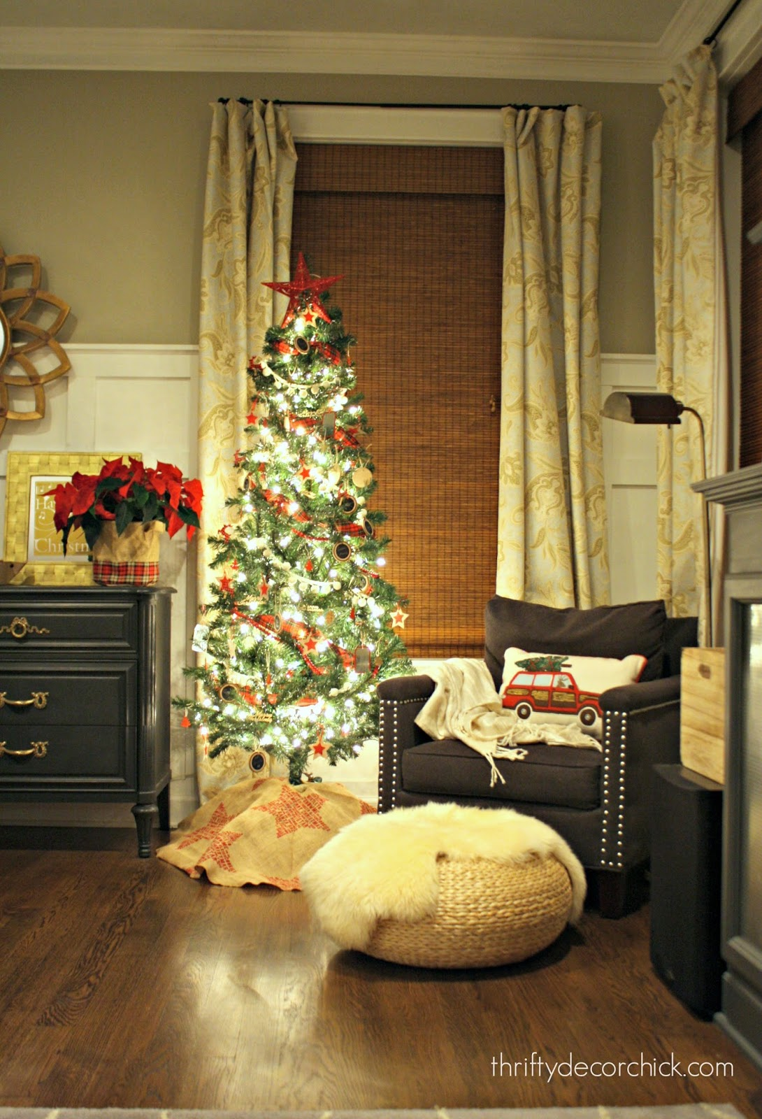 Inexpensive Ornament Ideas