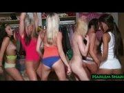 Harlem Shake Porno