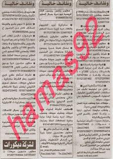 وظائف جريدة الأهرام الجمعة 8/11/2013, وظائف خالية مصر الجمعة 8 نوفمبر 2013