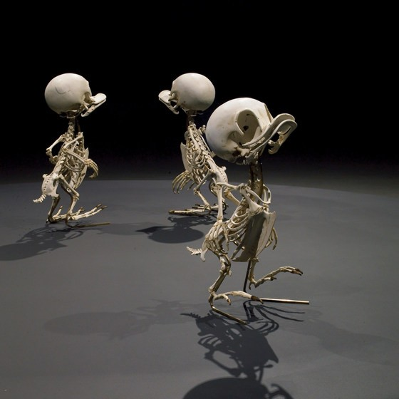 Rip, Rap og Rup skeletter