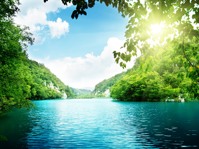 Sunshine Between Leaves River and Green Mountains HD Wallpaper
