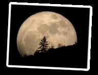 Luna en Cuarto Menguante