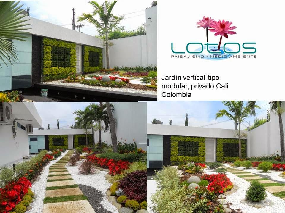 lotos paisajismo medio ambiente jardines verticales cali