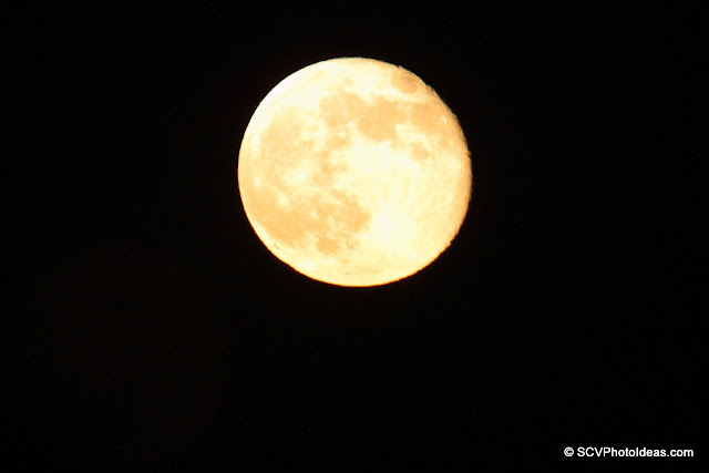 98% full moon rising VII