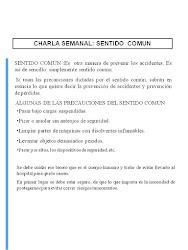 CHARLA DESENTIDO COMUN