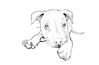 Desenhos Preto e Branco Cachorro Lindo Colorir