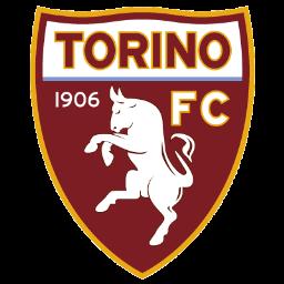 نادي تورينو الإيطالي