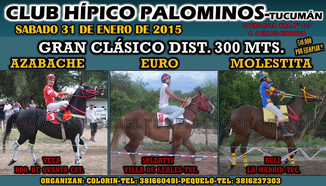 31-01-15-HIP.PALOMINOS-CLAS-