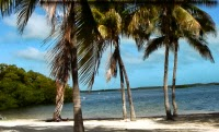John Pennekamp Coral Reef State Park, Florida USA