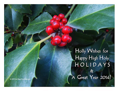 Happy Holidays 2014 Card