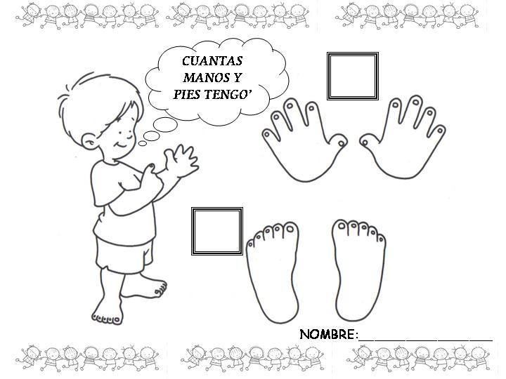 Actividades del cuerpo para niños de preescolar - Imagui