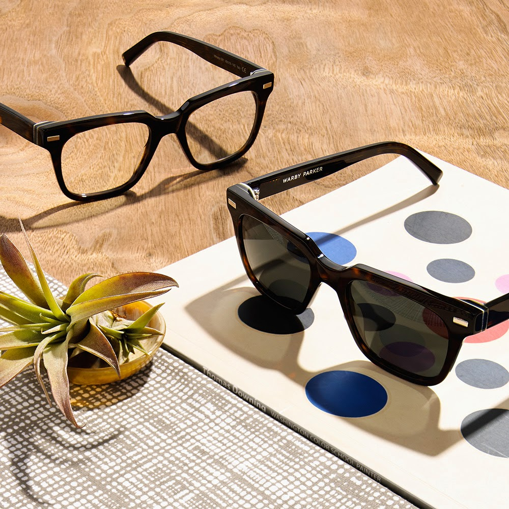 The Lovelee Girl Warby Parker Palm Canyon Collection