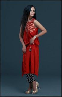 Best Pakistani Party Wear Dresses Collection 2013
