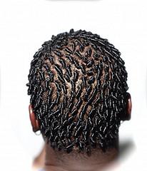 Kinky Hair 101 All About Locs The Kinky Apothecary