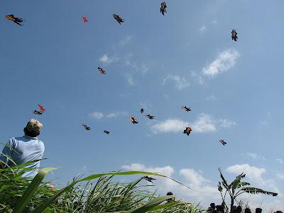 Kite Festival Padang Galak