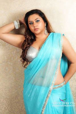 South actress namitha posing latest photoshoot in blue saree images