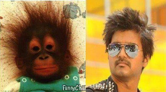 Funny Vijay Photo Collection