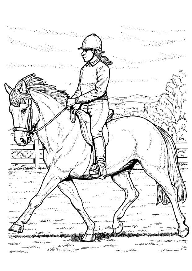 Aprende a montar un caballo con este post taringa - Coloriage equitation ...