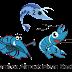 Mengenal Gambas (Gambas Almost Means Basic) - Visualisasi Bahasa Basic Di GNU/Linux