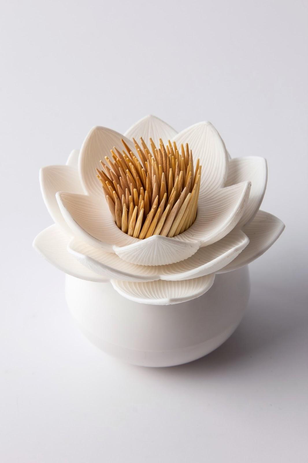 http://www.heartbeats.fr/diner-aperitif-cuisine-deco-design-idee-cadeau/260-lotus-cure-dents-qualy.html