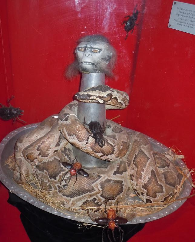 Temple of Doom Monkey brains prop