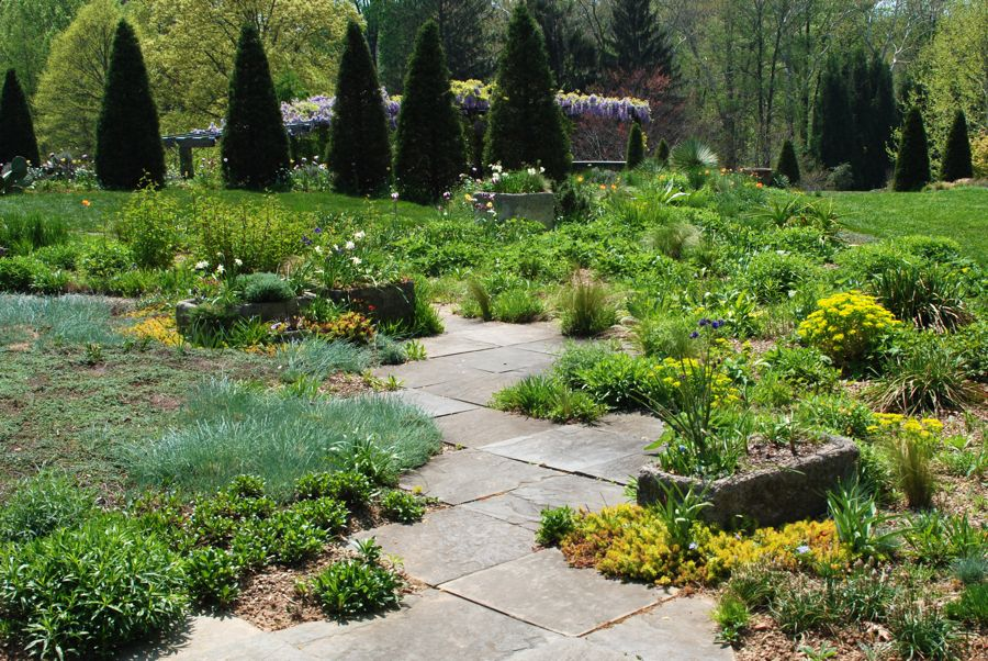 Dry sink containers are scattered at the top of the Gravel Garden, and along the stone step that descend done the slope. A green circle lawn (on left) is edged with six pillar Arborvitae, which act as the vertical exclamation points at the top of the hill.