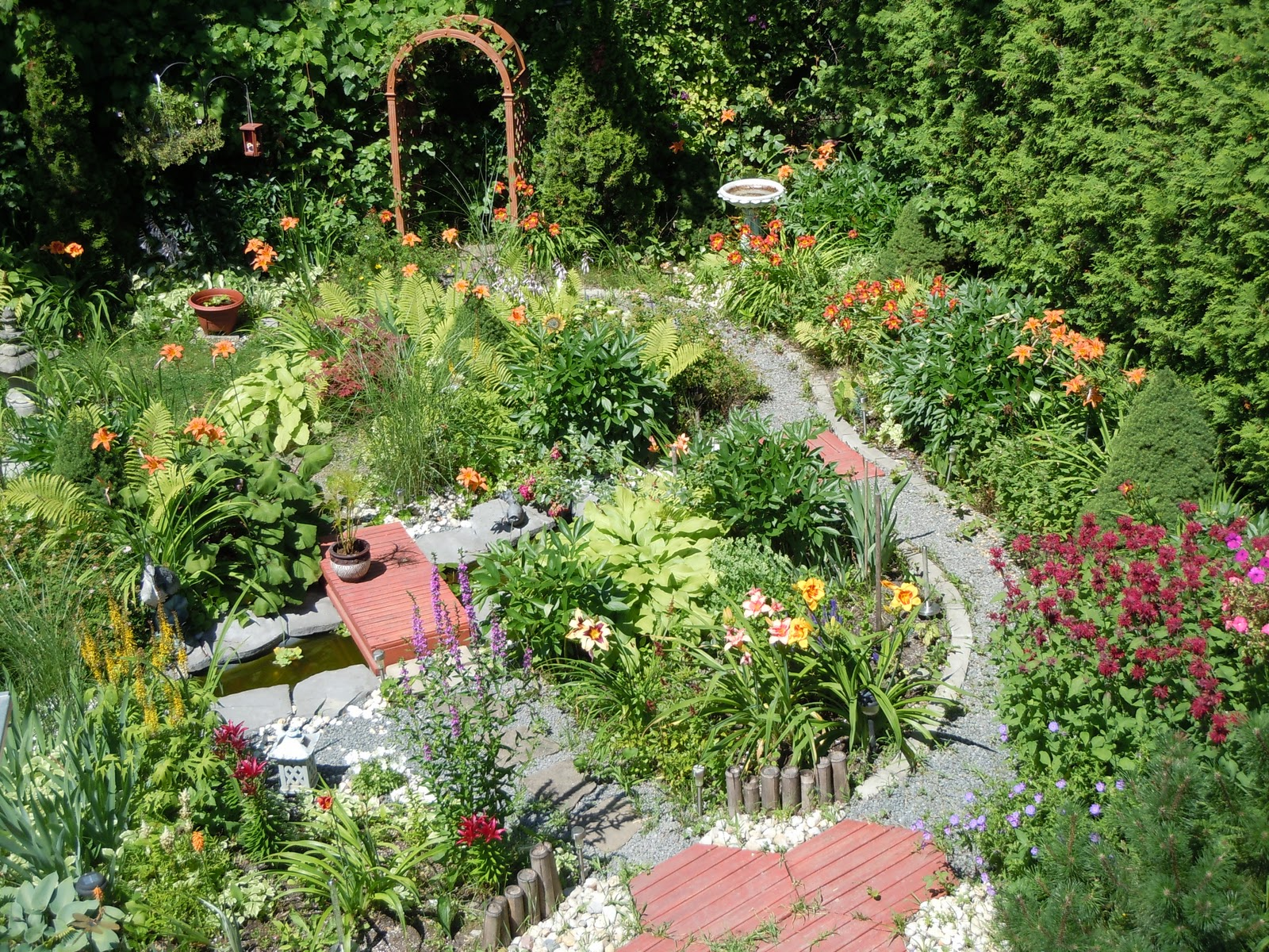 visionphotorama mon jardin au mois de juillet my garden in july. Black Bedroom Furniture Sets. Home Design Ideas