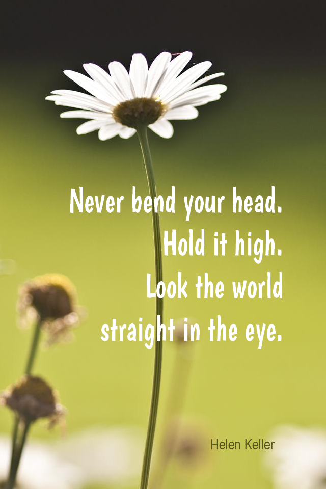 visual quote - image quotation for SELF-ESTEEM - Never bend your head. Hold it high. Look the world straight in the eye. - Helen Keller