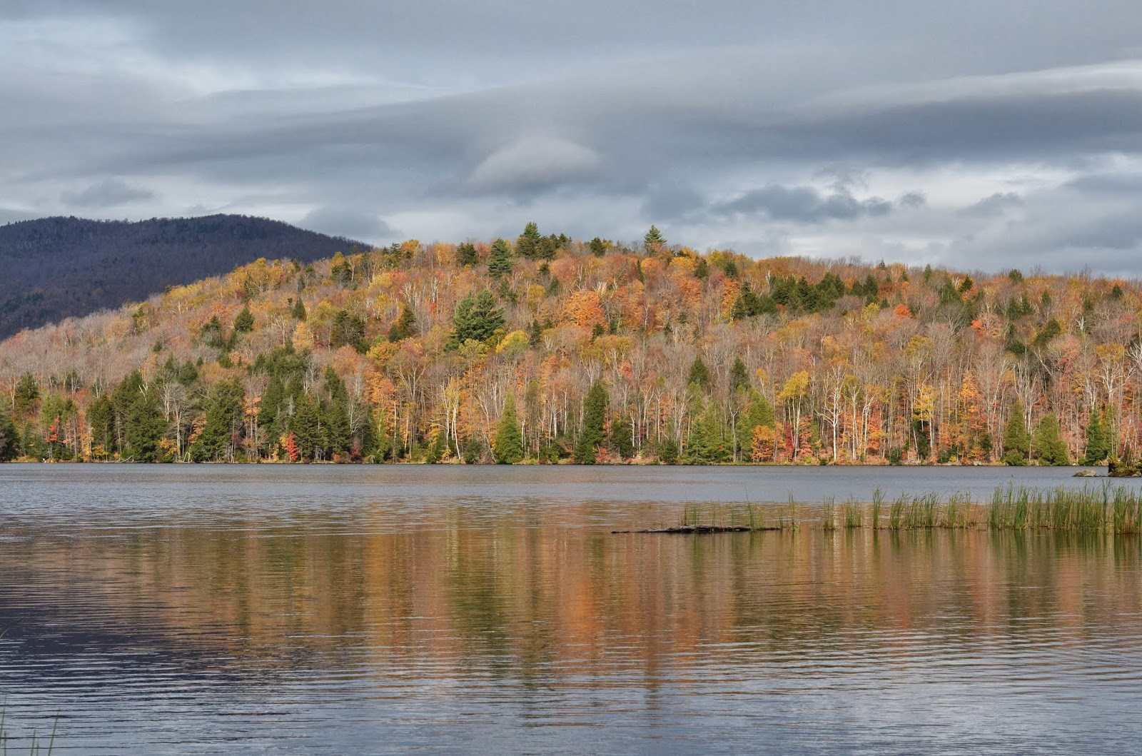fall, vermont, lake, fall foliage,
