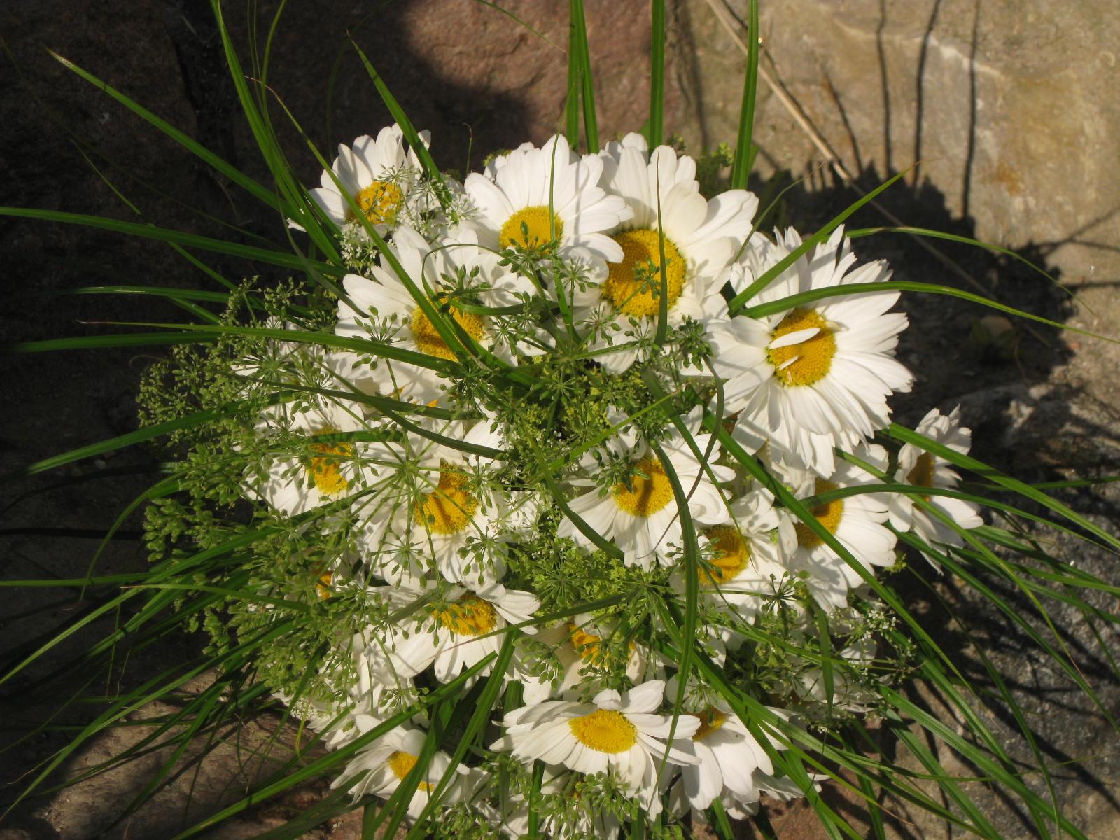 Velmi ráda vytvářím kytice na svatbu z toho co roste okolo díky
