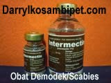 INTERMECTIN (Holland)
